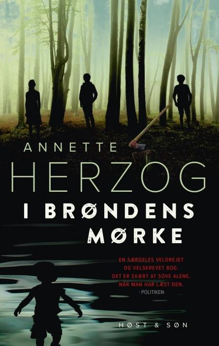 I brøndens mørke (e-bog) fra annette herzog på bogreolen.dk