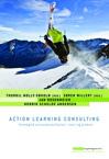 Action learning consulting (e-bog) fra thorkil molly-søholm fra tales.dk