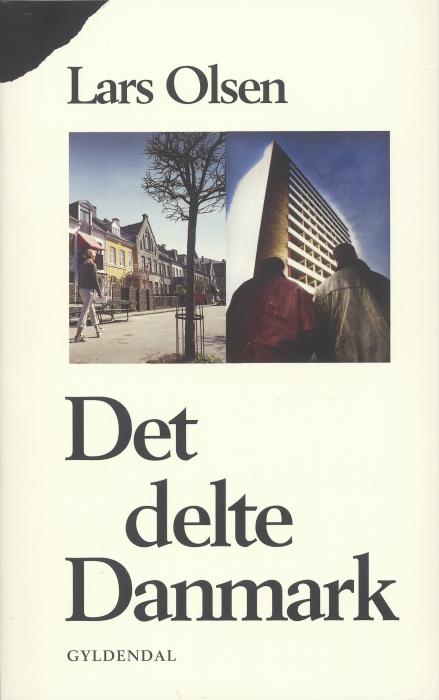 lars olsen Det delte danmark (e-bog) fra bogreolen.dk