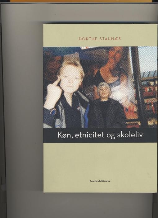 Køn, etnicitet og skoleliv (E-bog)
