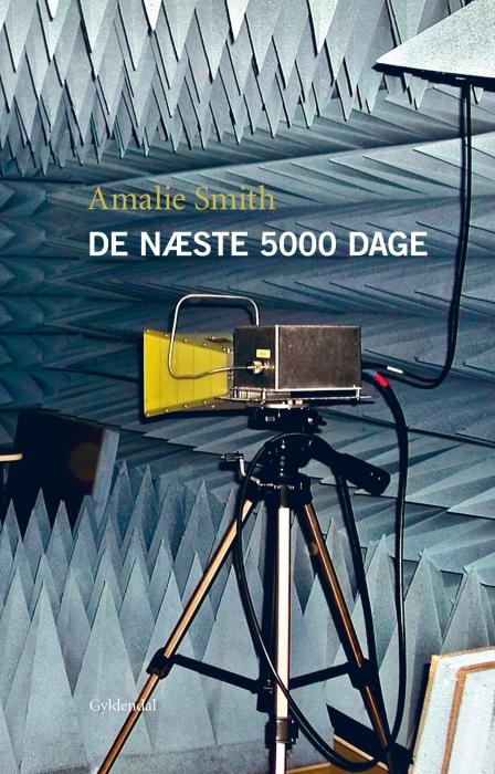 De næste 5000 dage (E-bog)