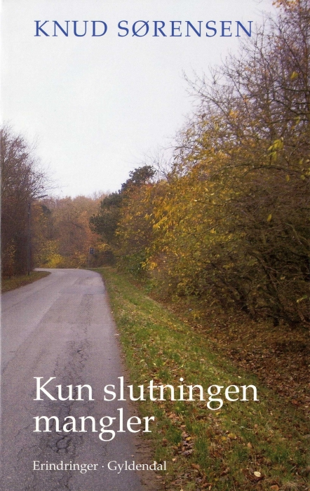 Kun slutningen mangler (E-bog)