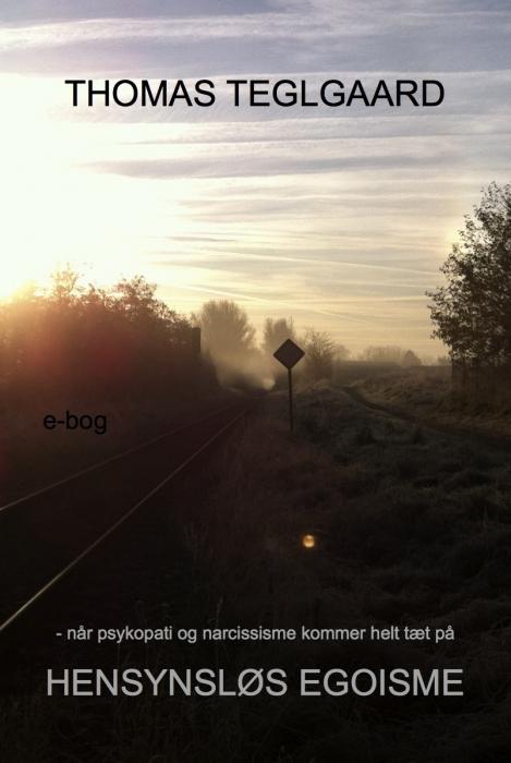 Hensynsløs egoisme (e-bog) fra thomas teglgaard fra bogreolen.dk