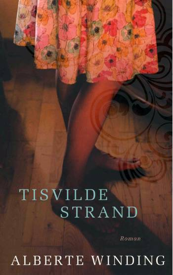 Image of Tisvilde strand (E-bog)