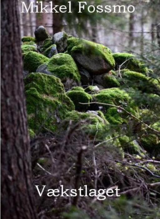 mikkel fossmo vækstlaget (e-bog)