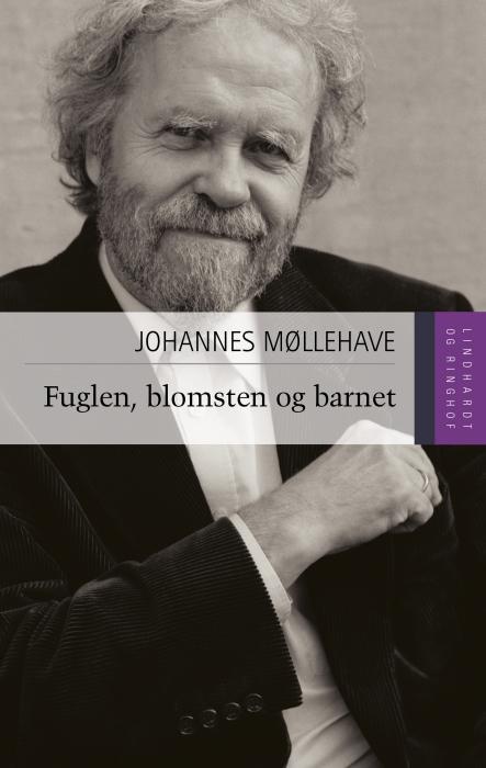 johannes møllehave – litteratur og fiktion