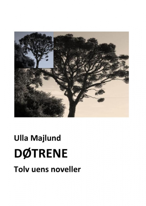 Døtrene. tolv uens noveller (e-bog) fra ulla majlund fra bogreolen.dk