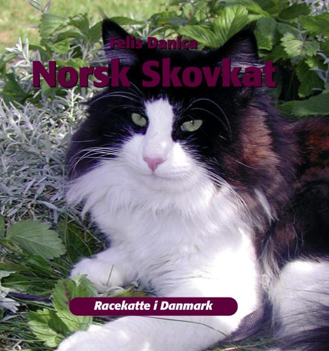Norsk skovkat (e-bog) fra felis danica på tales.dk