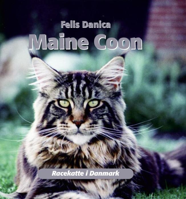 felis danica – Maine coon (e-bog) på tales.dk