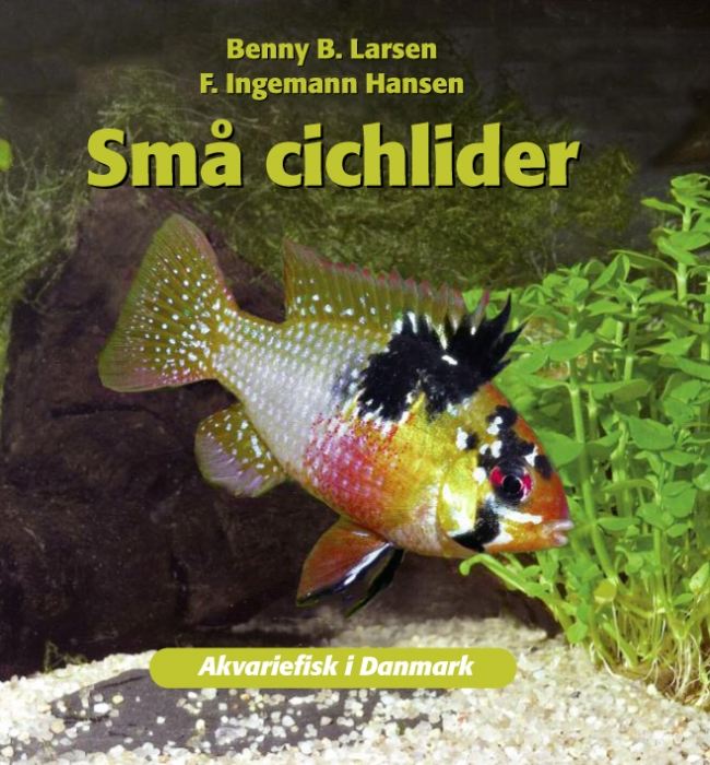 benny b. larsen – Små cichlider (e-bog) på bogreolen.dk