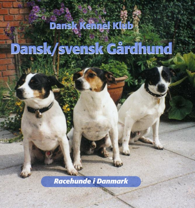 Dansk/svensk gårdhund (E-bog)