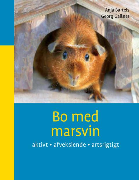 anja bartels – Bo med marsvin (e-bog) fra tales.dk