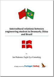 Intercultural relations between engineering student in Denmark, China and Brazil (E-bog)