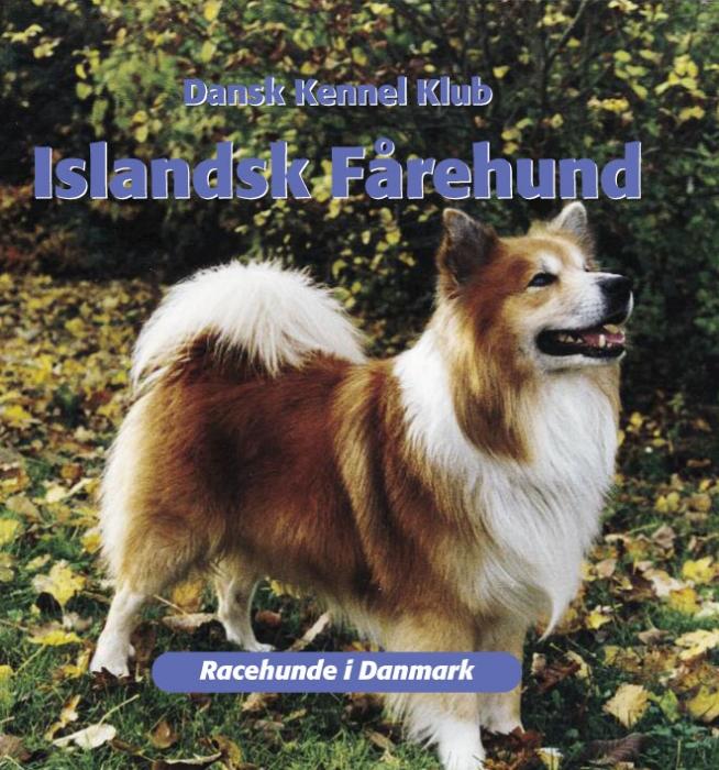 dansk kennelklub Islandsk fårehund (e-bog) på tales.dk