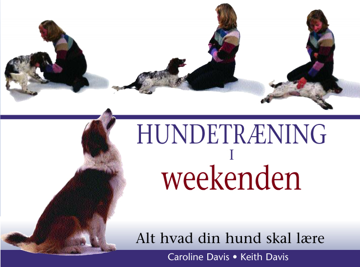 caroline davis Hundetræning i weekenden (e-bog) på tales.dk