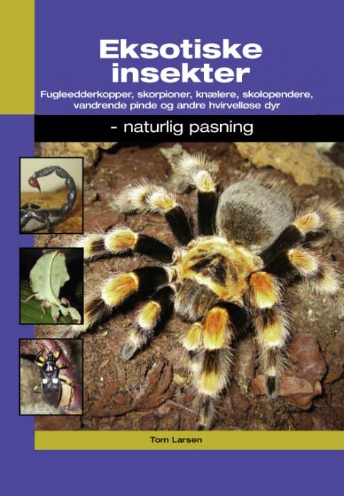 Eksotiske insekter (e-bog) fra tom larsen på tales.dk
