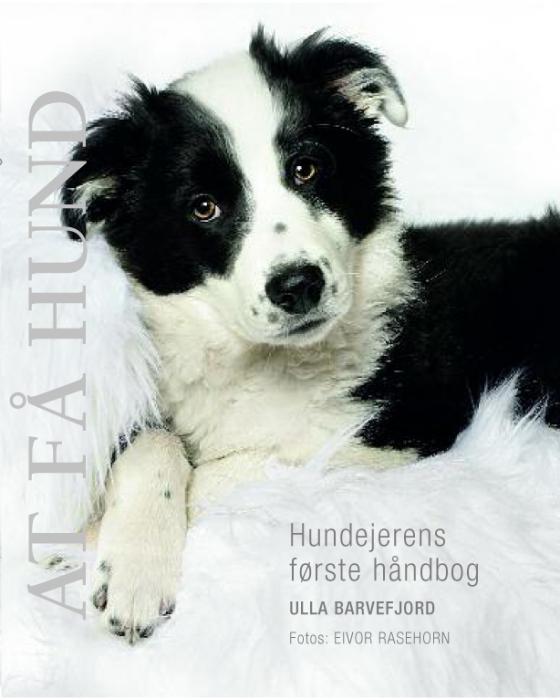 ulla barvefjord At få hund (e-bog) på tales.dk