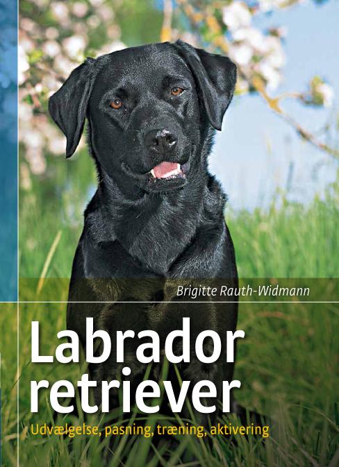 brigitte rauth-widmann Labrador retriever (e-bog) på tales.dk