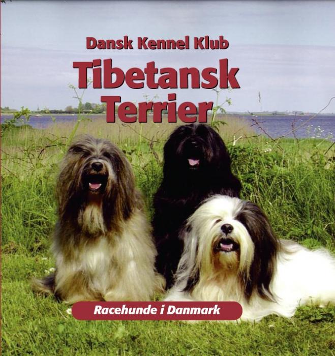 dansk kennelklub – Tibetansk terrier (e-bog) fra tales.dk