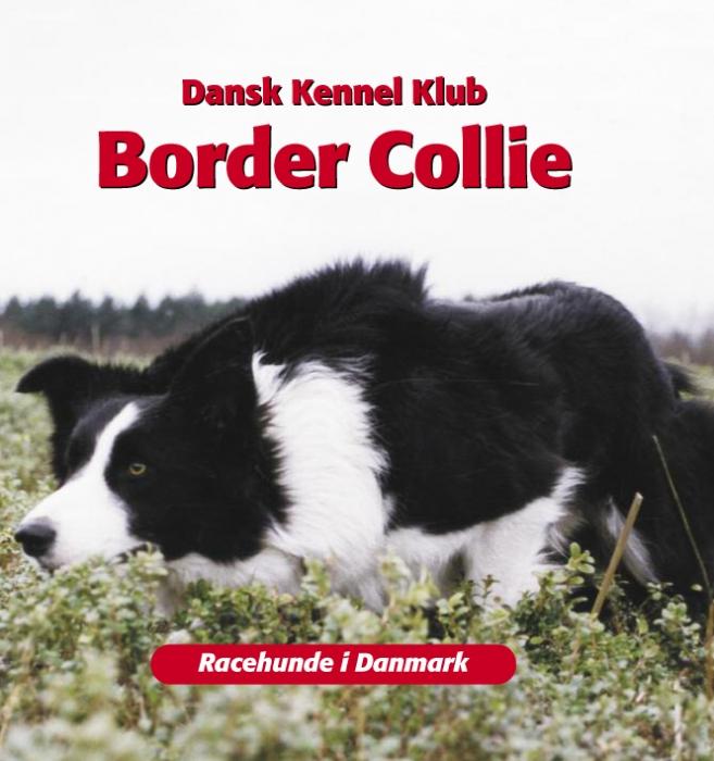 dansk kennelklub – Border collie (e-bog) på tales.dk