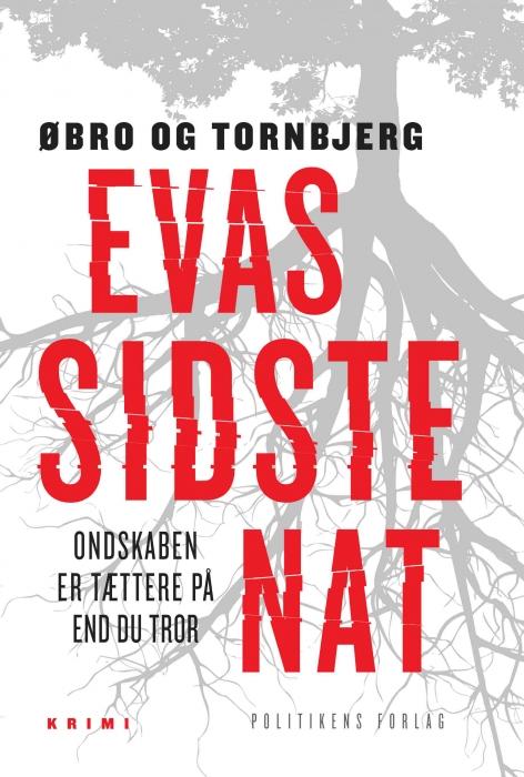 Evas sidste nat (E-bog)