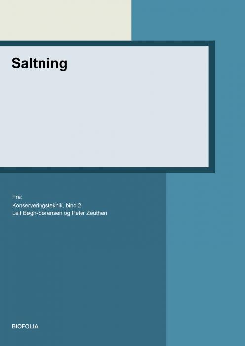 Saltning (E-bog)