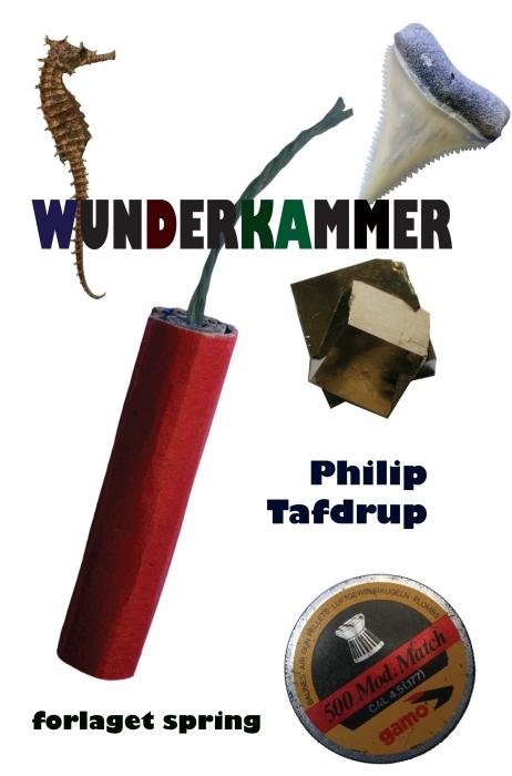 Wunderkammer (e-bog) fra philip tafdrup på bogreolen.dk