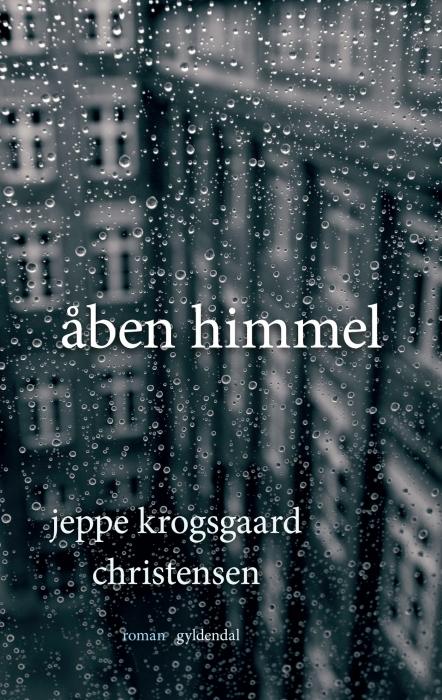 Image of   Åben himmel (E-bog)