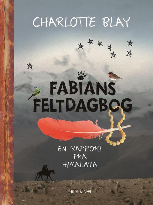 Fabians Feltdagbog (E-bog)