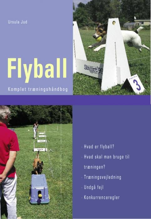 Image of   Flyball (E-bog)