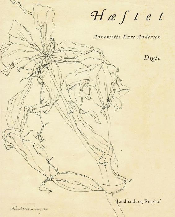 Image of Hæftet (E-bog)