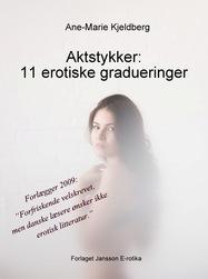 Image of Aktstykker: 11 erotiske gradueringer (E-bog)