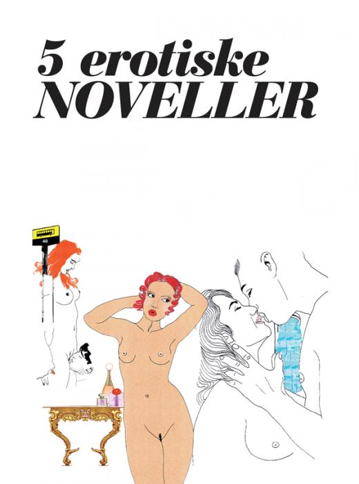 Billede af 5 erotiske noveller - vol. 1 (E-bog)