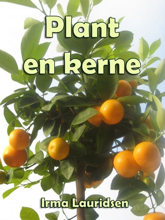 Image of   Plant en kerne (E-bog)