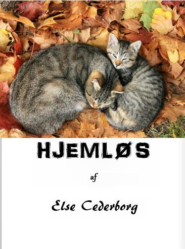Hjemløs (E-bog)