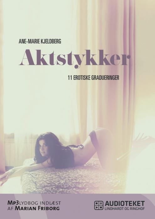 Image of Aktstykker - 11 erotiske gradueringer (Lydbog)