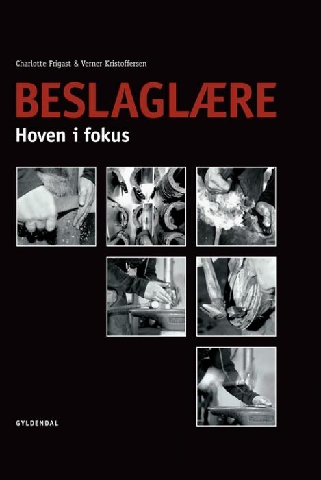 Image of   Beslaglære (Bog)