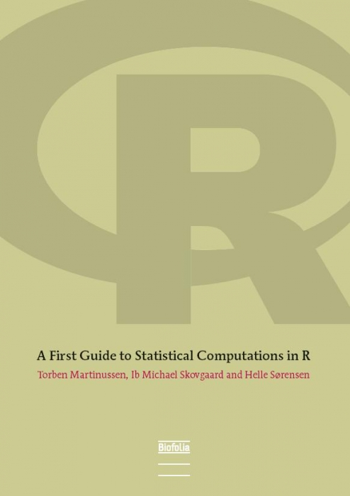 Image of   A First Guide to Statistical Computations in R (Bog)