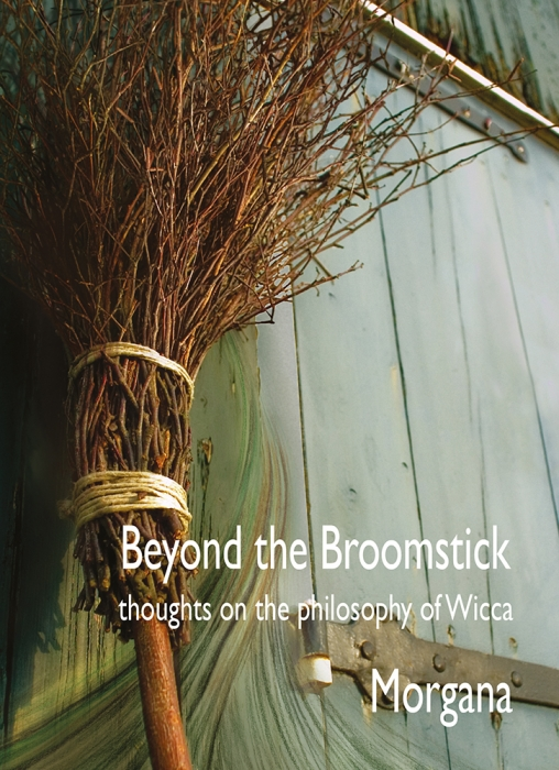 Image of   Beyond the Broomstick (Bog)
