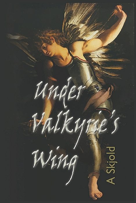 Under Valkyries Wing (Bog)