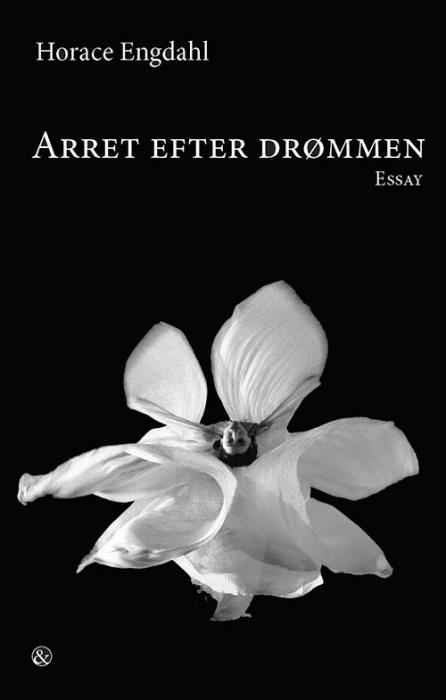 Image of   Arret efter drømmen (Bog)