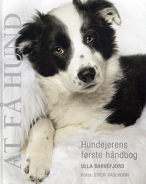 Image of   At få hund (Bog)