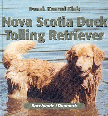 Image of Nova Scotia duck tolling retriever (Bog)