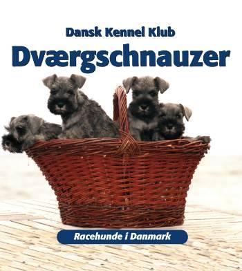 Dværgschnauzer (Bog)