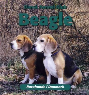 Image of   Beagle (Bog)