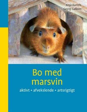 Image of Bo med marsvin (Bog)