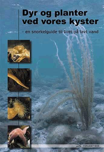 Image of   Dyr og planter ved vores kyster (Bog)