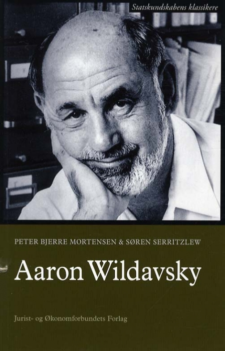 Image of   Aaron Wildavsky (Bog)