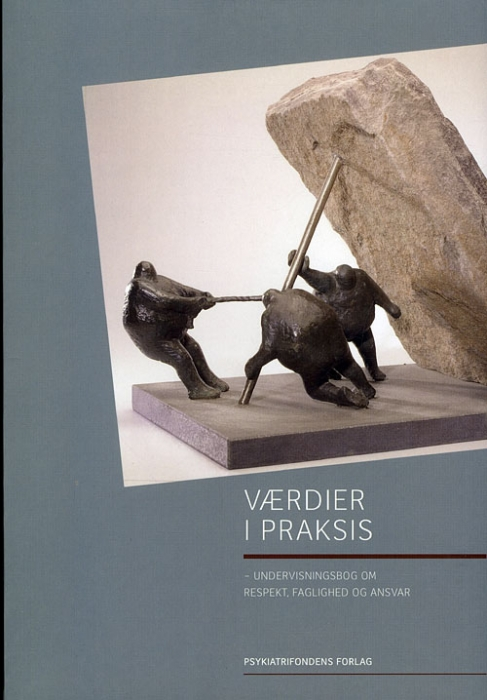Værdier i praksis (Bog)