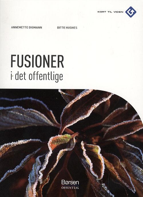 Image of Fusioner i det offentlige (Bog)
